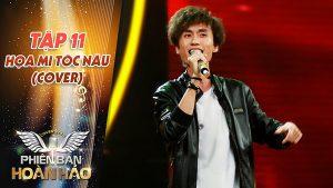 Họa Mi Tóc Nâu cover