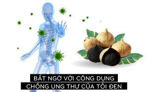 tỏi đen hỗ trợ trị ung thư